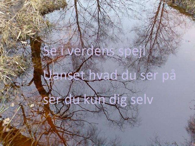 haiku på vandspejl