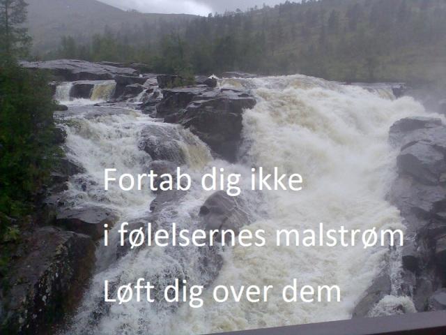 haiku over fos